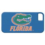 Cabeza del cocodrilo de la Florida - naranja y bla iPhone 5 Carcasas