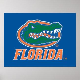 Cabeza del cocodrilo de la Florida - naranja y bla Posters