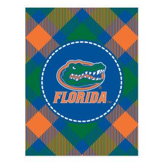 Cabeza del cocodrilo de la Florida - naranja y bla Tarjeta Postal