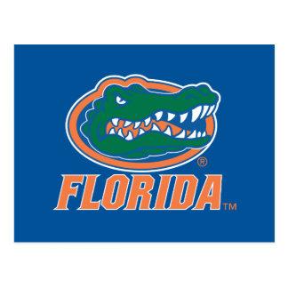 Cabeza del cocodrilo de la Florida - naranja y bla Postal