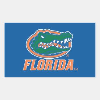 Cabeza del cocodrilo de la Florida - naranja y Rectangular Pegatinas