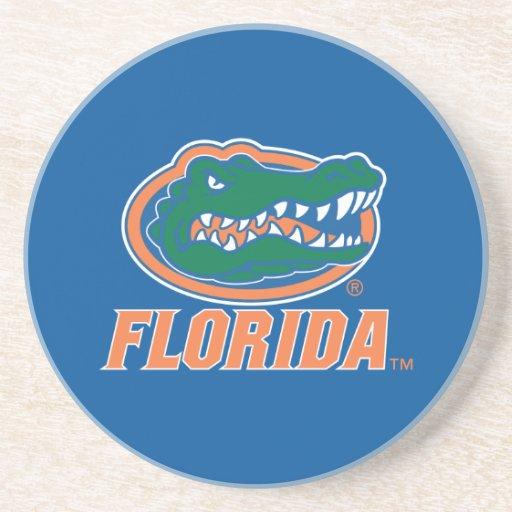 Cabeza del cocodrilo de la Florida Posavasos De Arenisca