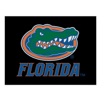 Cabeza del cocodrilo de la Florida Póster
