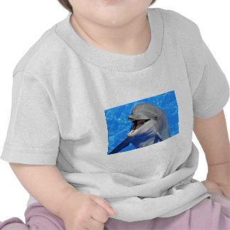 Cabeza del delfín de bottlenose camisetas