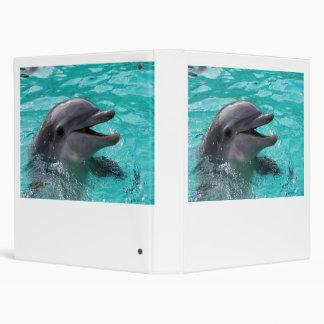 Cabeza del delfín en agua del aquamarine