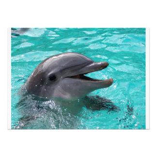 Cabeza del delfín en agua del aquamarine anuncios personalizados
