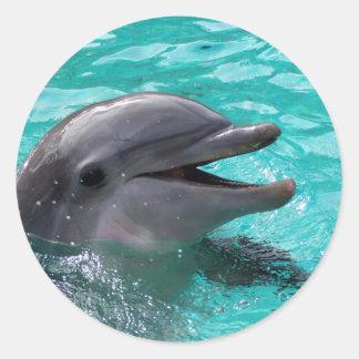 Cabeza del delfín en agua del aquamarine pegatina redonda