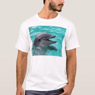 Cabeza del delfín en agua del aquamarine playera