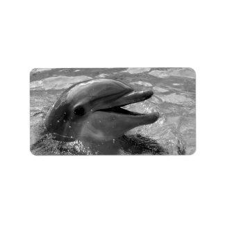 Cabeza del delfín en blanco y negro abierto de la  etiqueta de dirección