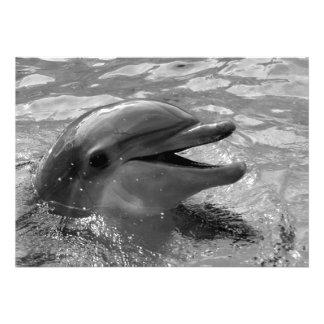 Cabeza del delfín en blanco y negro abierto de la  invitacion personal