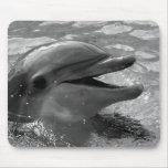 Cabeza del delfín en blanco y negro abierto de la  alfombrilla de raton