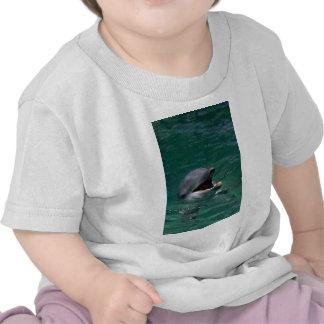 Cabeza del delfín fuera del agua camisetas