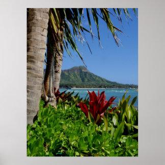 Cabeza del diamante Honolulu Hawaii Impresiones