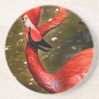 Cabeza del flamenco curvada abajo posavaso para bebida
