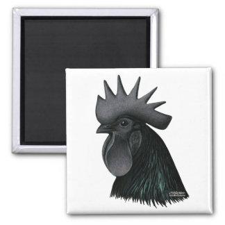 Cabeza del gallo de Ayam Cemani Imán De Frigorífico
