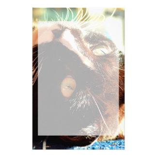 cabeza del gato en imagen felina animal aseada de papeleria de diseño