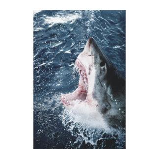 Cabeza del gran tiburón blanco impresión en lienzo estirada