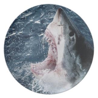 Cabeza del gran tiburón blanco plato de cena
