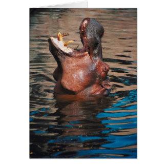 Cabeza del hipopótamo tarjeta de felicitación