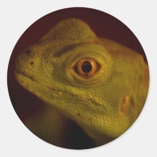 cabeza del lagarto etiqueta redonda