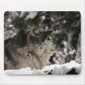 Cabeza del lobo tapetes de ratón