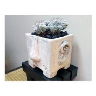 Cabeza del pote con el cactus por la planta postal