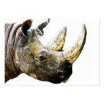 Cabeza del rinoceronte, fondo blanco plantillas de tarjeta de negocio