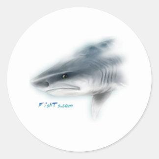 Cabeza del tiburón de tigre pegatinas
