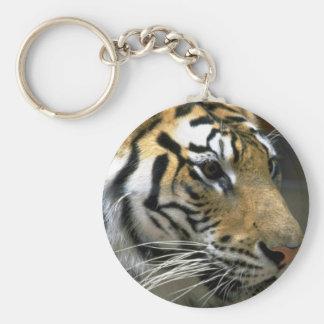 Cabeza del tigre, derecho llavero personalizado