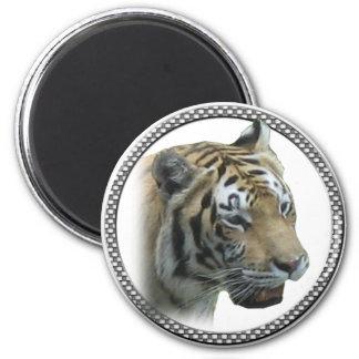 Cabeza del tigre imán