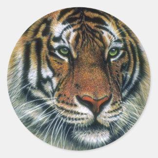 Cabeza del tigre siberiano pegatina redonda