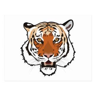 Cabeza del tigre postales