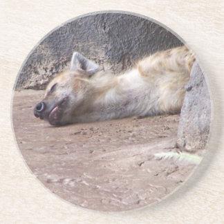 Cabeza durmiente del Hyena que miente en la imagen Posavasos Diseño