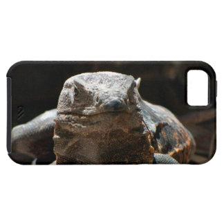Cabeza en iguana iPhone 5 funda
