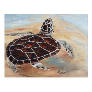 Cabeza encima de la postal de la tortuga