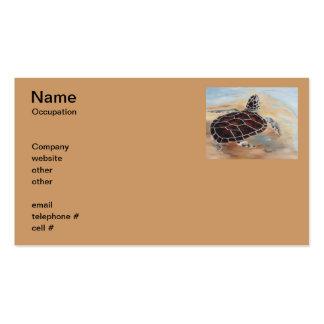 Cabeza encima de tarjetas de visita de la tortuga
