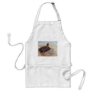Cabeza encima del delantal de la tortuga