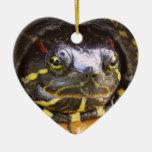 Cabeza espigada roja de la tortuga del resbalador adornos de navidad