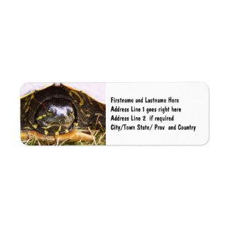 Cabeza espigada roja de la tortuga del resbalador etiqueta de remitente