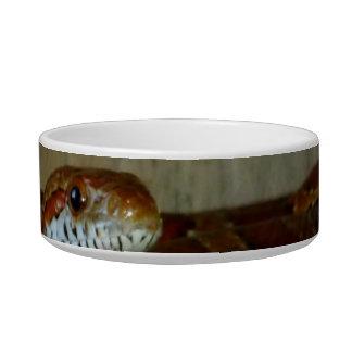 cabeza lateral de la serpiente de rata roja tazón para comida gato