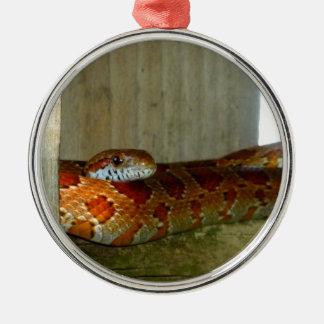 cabeza lateral de la serpiente de rata roja ornamentos de reyes magos