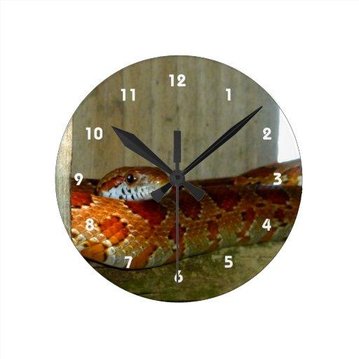 cabeza lateral de la serpiente de rata roja reloj de pared