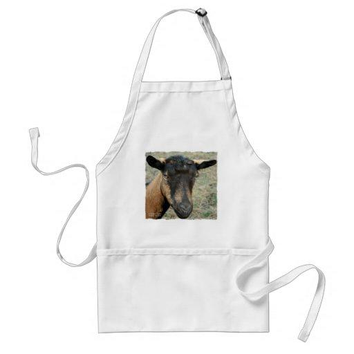 Cabeza marrón de la cabra de Oberhasli tirada en c Delantal