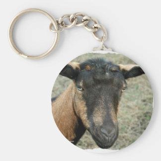 Cabeza marrón de la cabra de Oberhasli tirada en c Llaveros Personalizados