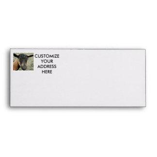 Cabeza marrón de la cabra de Oberhasli tirada en c