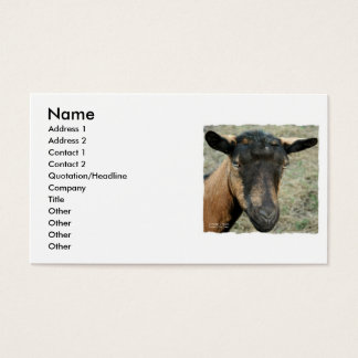 Cabeza marrón de la cabra de Oberhasli tirada en Tarjetas De Visita