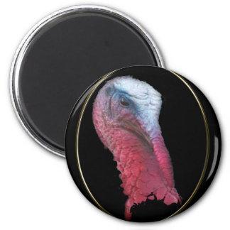 Cabeza salvaje de Turquía Imán Redondo 5 Cm