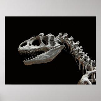 Cabeza y cuello fósiles del allosaurus póster