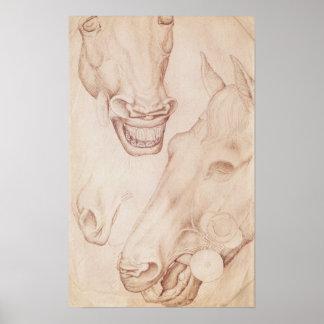 Cabezas de caballos, del álbum de Vallardi Póster