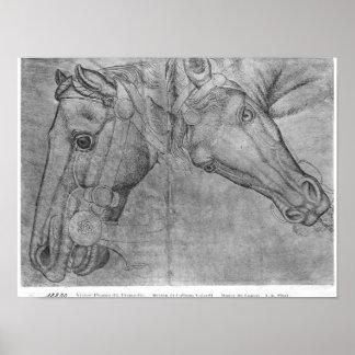Cabezas de caballos, el álbum de Vallardi Póster